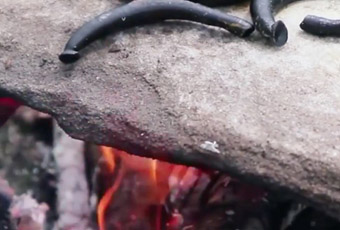 Pijavice pečené na horúcom kameni 2